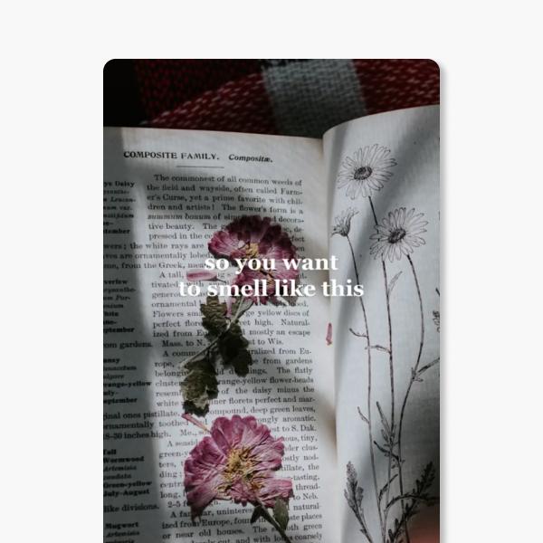 На кого підписатися: TikTok із рекомендаціями парфумів під певну естетику — Життя на Wonderzine