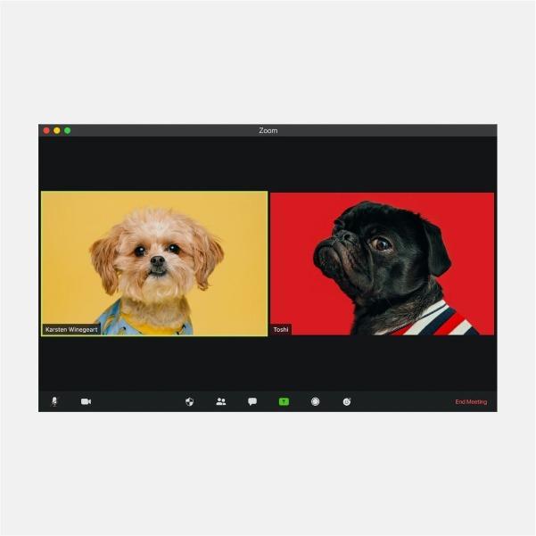 Є питання. Zoom, Skype й інші месенджери: як увічливо повідомити, що не хочеш спілкуватися?  — Кар'єра на Wonderzine