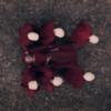 Дивіться тизер четвертого сезону серіалу «Оповідь служниці»