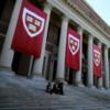 Українські випускниці «Гарварду» запустили менторську програму для жінок