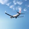 Japan Airlines відмовляться від звернення ladies and gentlemen