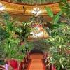 У Барселоні оперний театр проведе концерт для рослин