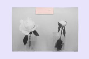 Артбук I love you художниці Каті Лесів про етапи зрілості